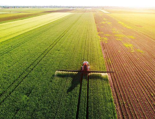 Ruralni razvoj – Godišnji plan objave natječaja u 2020.