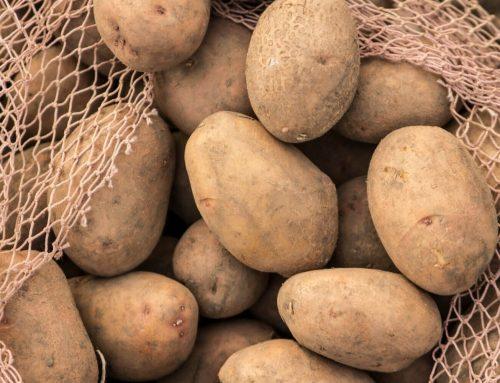 Nacrt natječaja 4.1.1 Ulaganja u skladišne kapacitete za krumpir